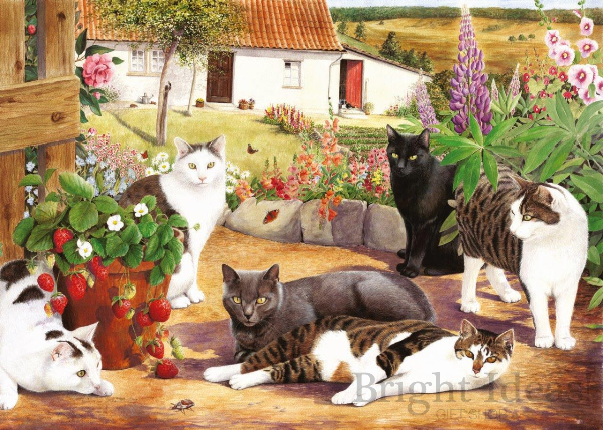 Cool Cats Brampton Collection 500 Big Piece Puzzle By