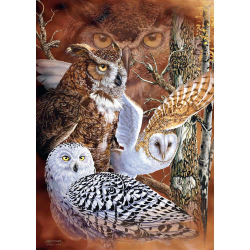 18346 Find owls jigsaw puzzle jumbo tawny snowy