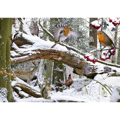 Winter Wood House Of Puzzles Jigsaw 500
