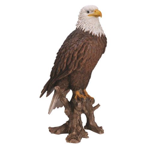 XRL-BLDE-A American Bald Eagle Bird of Prey vivid