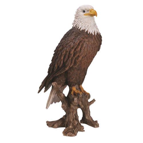 XRL-BLDE-B AMERICAN BALD EAGLE BIRD OF PREY VIVID