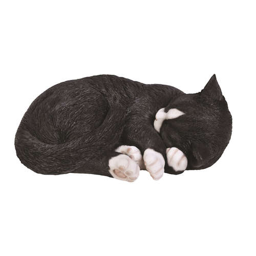 XRL-ZC35-B SLEEPING CAT VIVID ARTS REAL LIFE BLACK