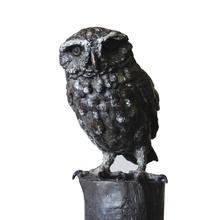 Little Owl 10/10 Bronze bird sculpture by JOEL